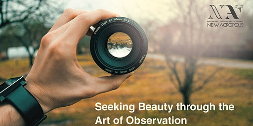 Seeking Beauty through The Art of Observation