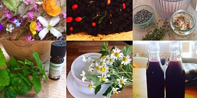 Lifestyle, Craft and Wellbeing