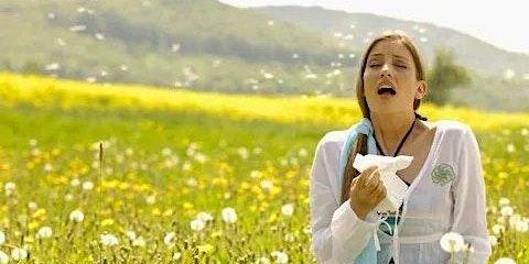 Allier naturopathie et aromathérapie contre les allergies