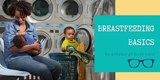 Pittsburgh Birth Nerd Breastfeeding Basics Class 5/3/20