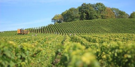 Sustainable Wines for Earth day tickets