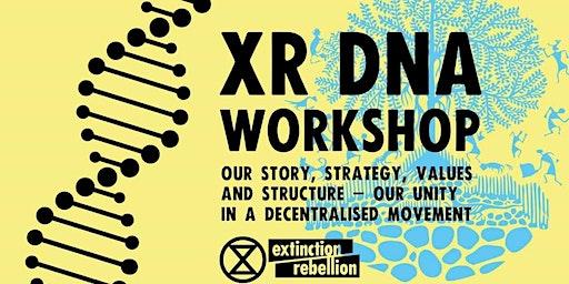 DNA of Extinction Rebellion workshop in Dorchester