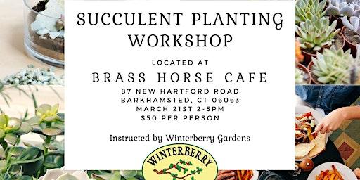Succulent Planting Workshop at Brass Horse Cafe