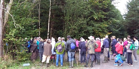 Clonad Forest Ecology Woodland Walk tickets