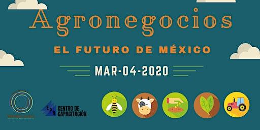 Agronegocios el futuro de México