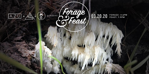 Forage & Feast Dinner