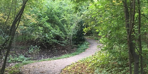 Dane Park Forest Therapy Walk 4/12