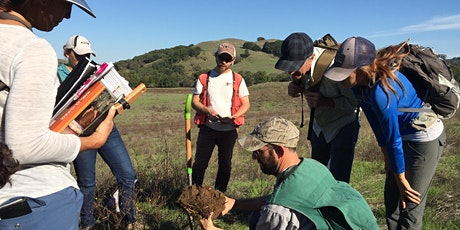 Wetland Delineation Training 2020 tickets