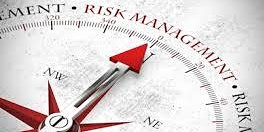 Principles and Modern Techniques of Project Risk Management and Compliance