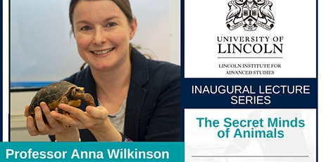 Inaugural Lecture:Prof Anna Wilkinson tickets