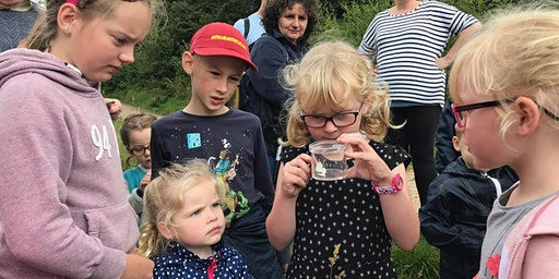 Tegg's Nose Butterfly Walk