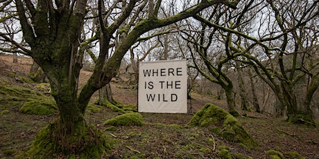 Where is the Wild? Castle Howard Creative Art Workshop 28/03/20 tickets