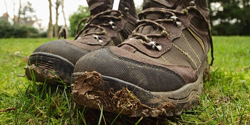 Gritstone Trail Explorer Walks 2020 - Mow Cop to Nick i' th' Hill