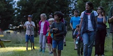 Evening nature walk with Tyntesfield's area ranger tickets