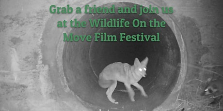 Wildlife on the Move Film Festival tickets