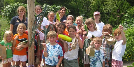 2020 Camp Sequoia: Eco Explorers (August 3 – 7) tickets