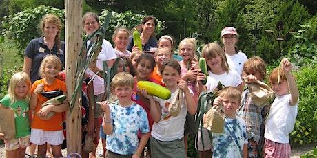 2020 Camp Sequoia: Junior Picassos (August 17 – 21) tickets