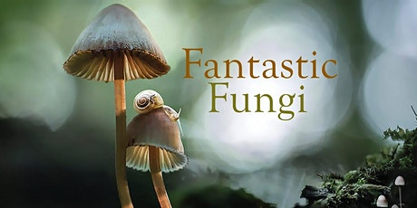 Fantastic Fungi - Saskatoon Encore! tickets