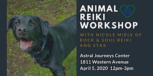 Animal Reiki Workshop