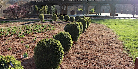 Postponed - Pruning Workshop, Winter 2020 (Forsyth County) tickets