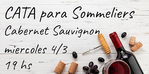 Cata de Cabernet Sauvignon para Sommeliers