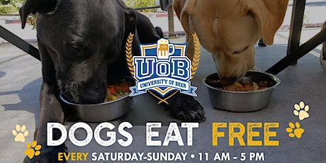 Dogs Eat Free University of Beer tickets
