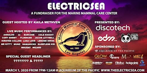 Electricsea at the Aquarium