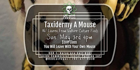 How to taxidermy a mouse class tickets