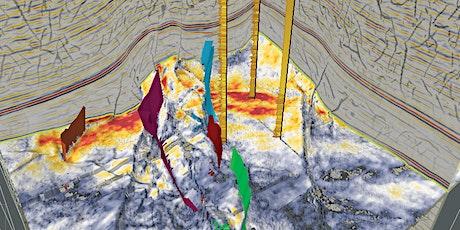 Taller de Interpretación Sísmica 3D: Ciudad de Mexico entradas