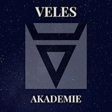 Veles Akademie logo