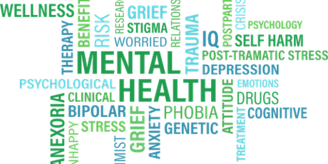 Adult One Day Mental Health First Aid Course tickets