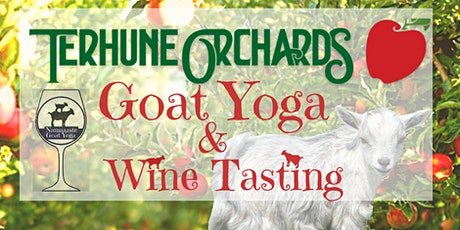 Goat Yoga and Wine Tasting at Terhune Orchard: Namaaaste Goat Yoga tickets