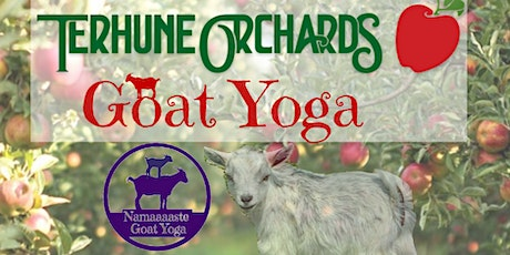 Goat Yoga at Terhune Orchards: Namaaaste Goat Yoga tickets