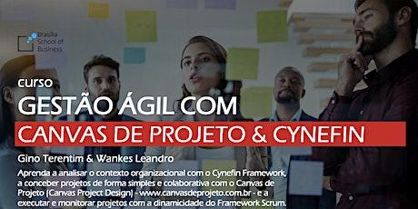 Gestão Ágil com Canvas de Projeto & Cynefin - Gino Terentim & Wankes Leandro [Turma de Julho em Brasília] ingressos