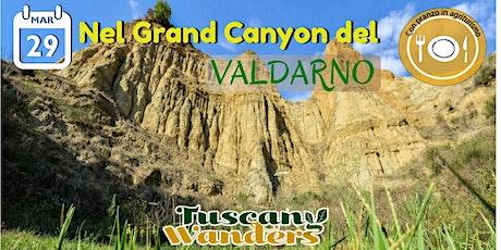 A spasso nel Grand Canyon del Valdarno biglietti
