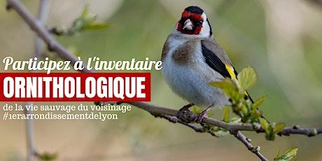 A la découverte des oiseaux du 1er arrondissement de Lyon billets