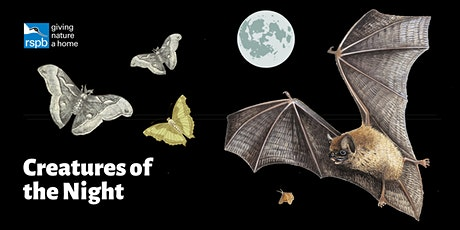 Haweswater's Creatures of the Night tickets
