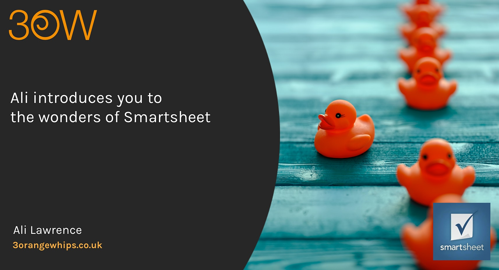 Ali introduces you to the wonders of Smartsheet ®