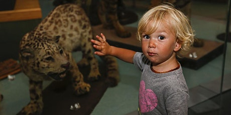 Animal Dance (ages 2-5) 11.15am session tickets