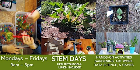 Summer Camp - STEM Days (Ages 5-13 years) tickets