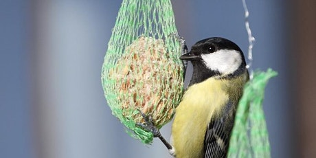 Bird Feeders and Planting tickets