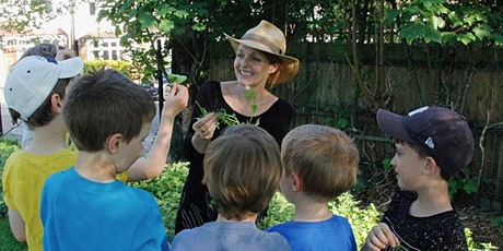 Foraging for Wild Food and Medicine -  North London  tickets