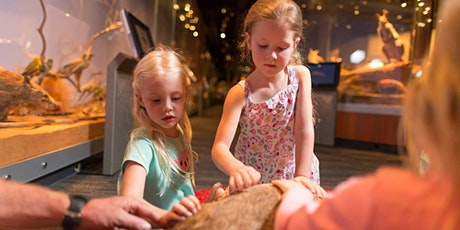 Young Explorers April: Fossils! tickets