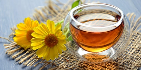 9 Week  Spring Herbal Medicine and Holistic Health Course tickets