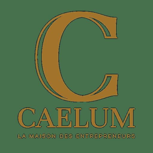 CAELUM EXPERTS logo