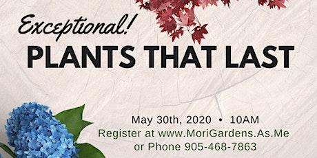 Exceptional Plants That Last : Garden Seminar tickets