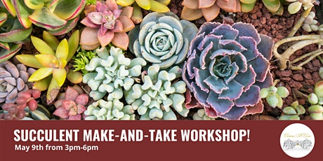 Succulent Make & Take Workshop tickets