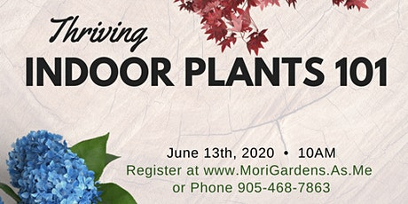 Indoor Plants 101 : Garden Seminar tickets