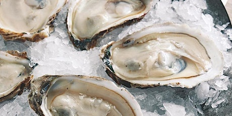 Cedar Park Oyster Fest at The Victory Cup tickets