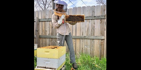 Build Your Own Bee Hive tickets